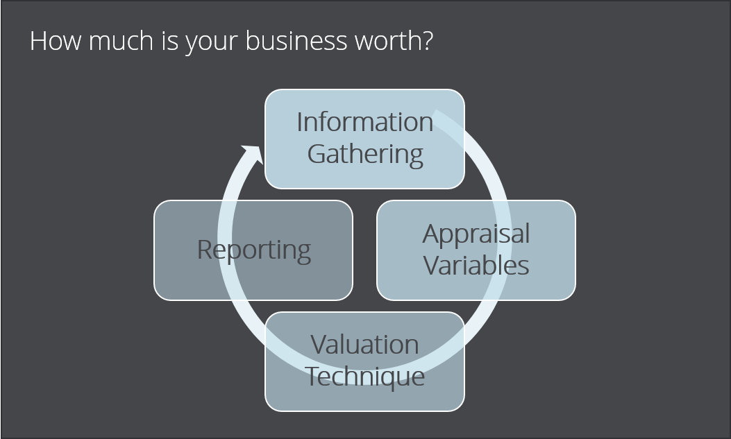 how much is your business worth?  information gathering, appraisal variables, valuation technique, reporting