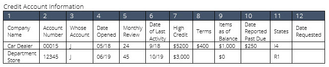 credit account information with details on credit history